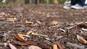 mozziconi-sigaretta-parco