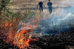 bruciature-stoppie